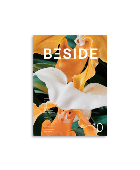 Beside Beside magazine 10