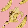 "Paulie Poster Bananacat 8""x10"""