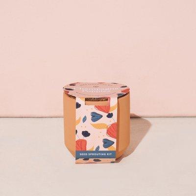 Modern sprout Mini Jardinière - Coquelicots Champagne