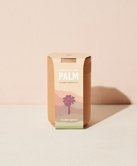 Modern sprout Terracotta kit - Palm