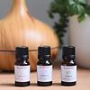 BB Organic Essential Oils - Immunity