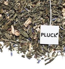 Pluck Pluck Prince Edward Lavender