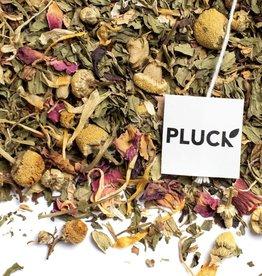 Pluck Pluck Organic Spa Day