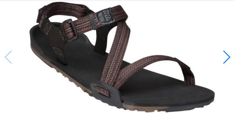 Xero Shoes Xero Z-Trail Sandal (Men)