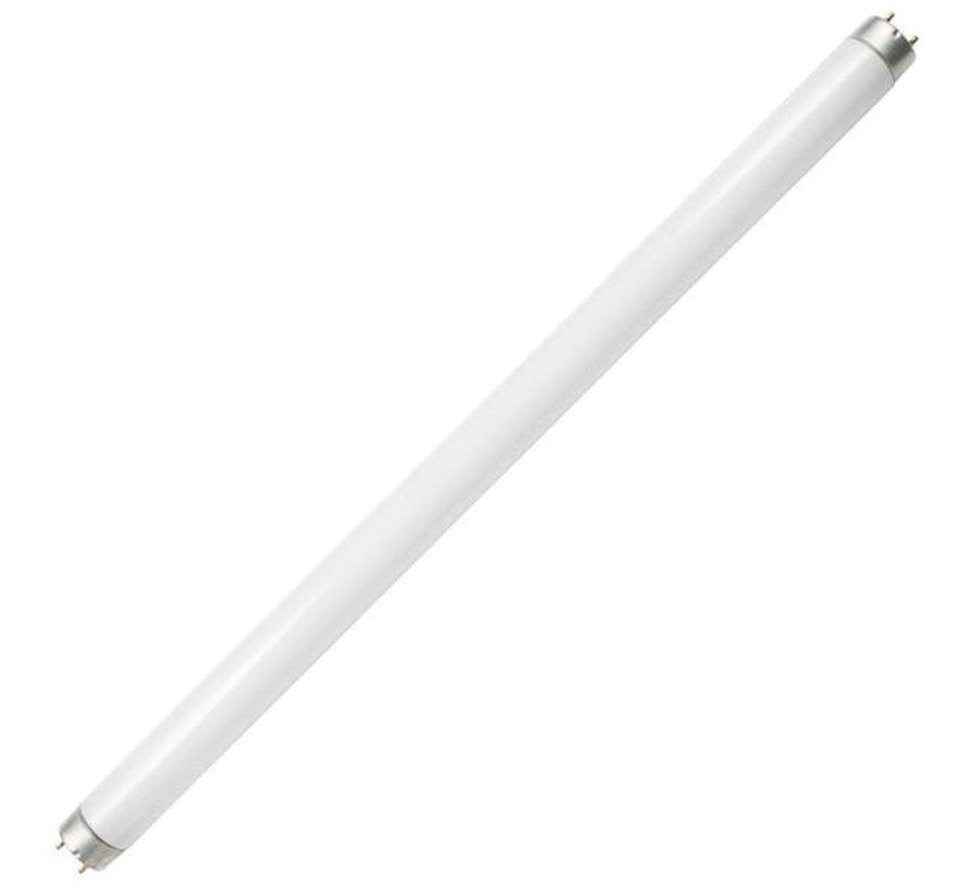 Bulb-Flrscnt Tube 15W (2)
