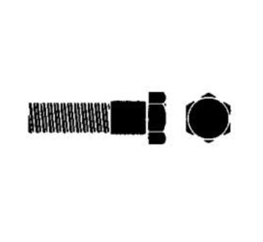 CapScr-SS Hex 1/4-28x1 Single