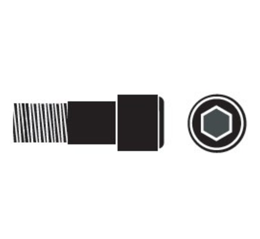 CapScr-SS Sckt #10-24x3/4 Single