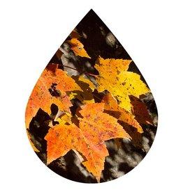Maple Dark Balsamic