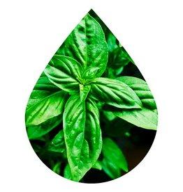 Basil Olive Oil