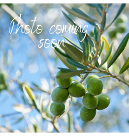 Mediterranean Ultimate Oil & Vinegar Gift Basket