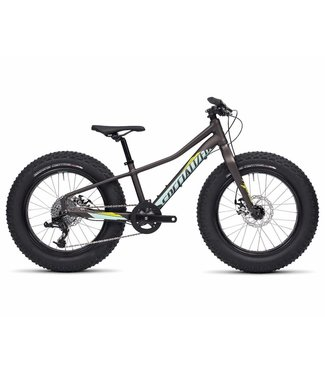 SPECIALIZED FATBOY 20 GRIS/VERT ,11 po