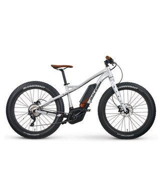 RALEIGH FATBIKE RALEIGH MAGNUS IE SILVER LG