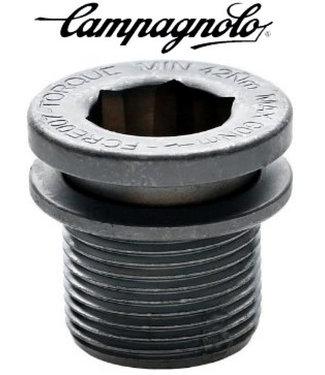CAMPAGNOLO VIS FIX/PED/ULTRA TORQUE