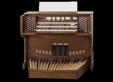 Organ Teachers