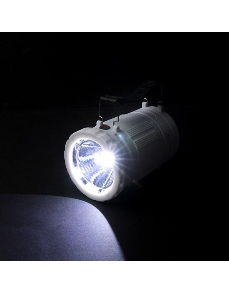 Z-Bug Lantern & Light