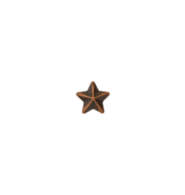 1 Star Cluster