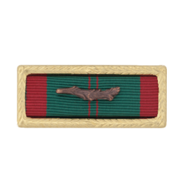 Ribbon w/Frame - Vietnam Civil Action 1st Class Army
