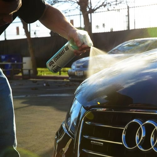 Chemical Guys WAC_707RU_16 - EcoSmart Waterless Wash & Wax Ready To Use (16 oz)