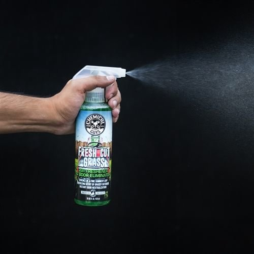 Chemical Guys Canada AIR24316 - Fresh Cut Grass Air Freshener (16 oz)