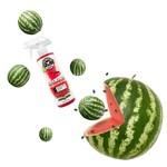 Chemical Guys Canada AIR22504 - Fresh Slice Watermelon Premium Air Freshener & Odor Eliminator (4 oz)
