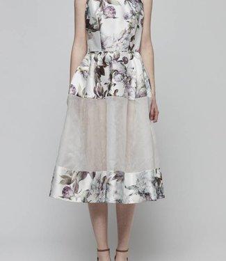 Sheer Paneled Floral Dress
