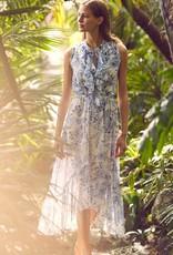 Misa Audra Dress
