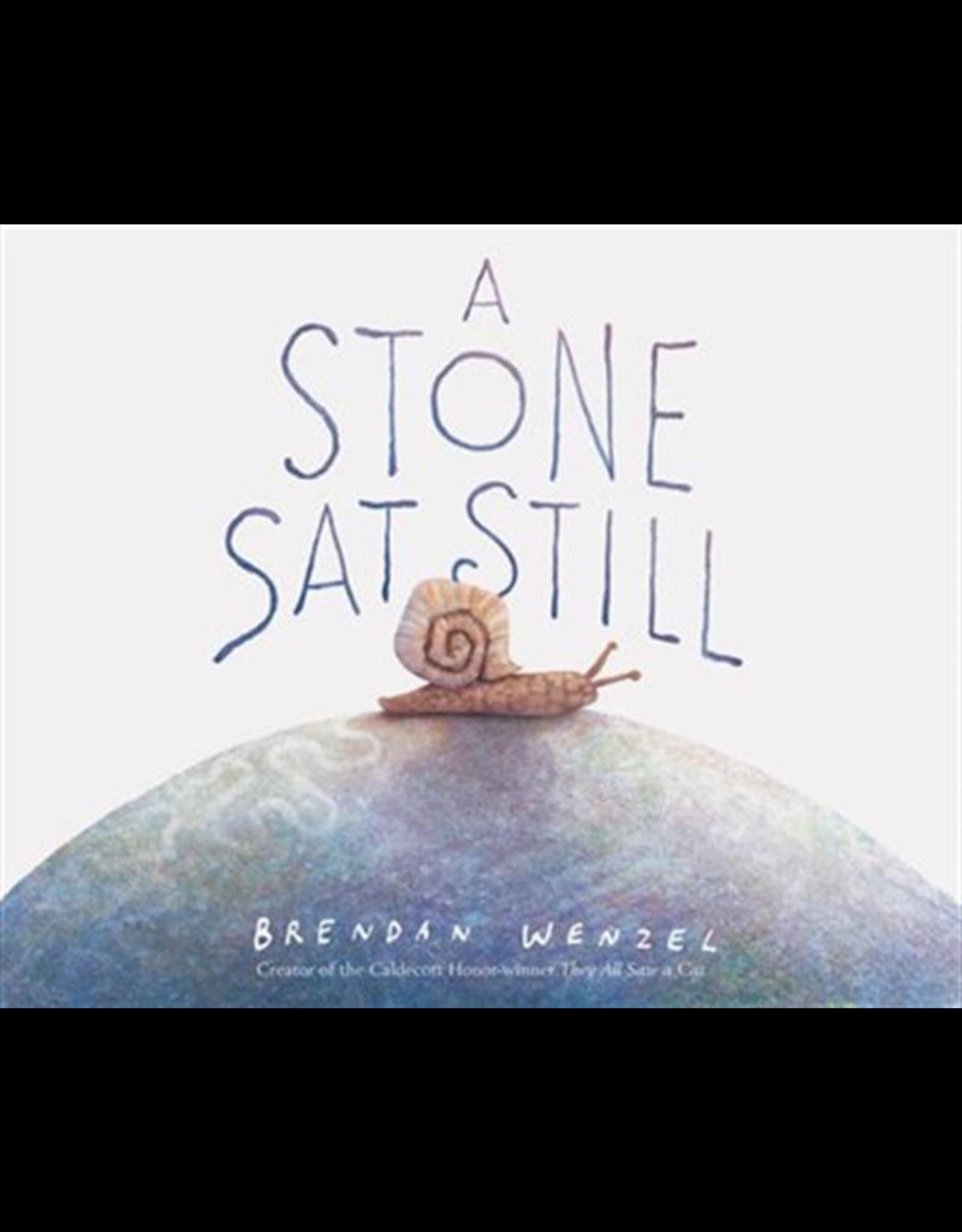 Raincoast Books A Stone Sat Still