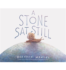 Raincoast Books A Stone Sat Still