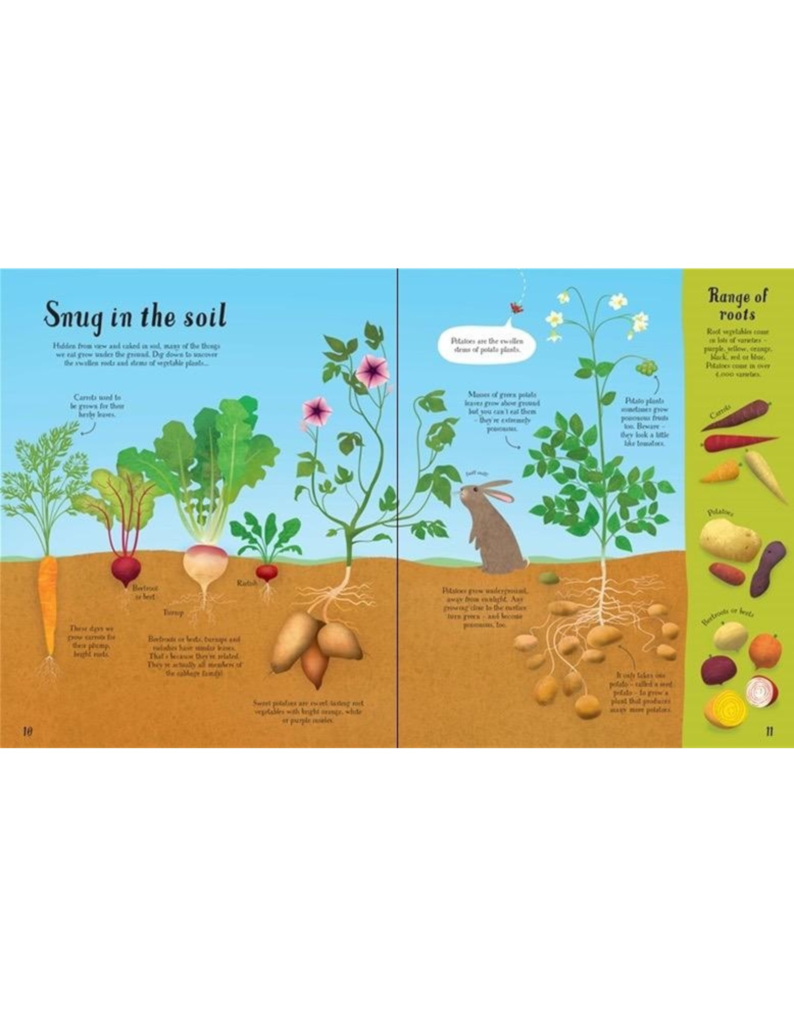 Usborne It All Starts With A Seed… How Food Grows