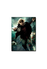Harry Potter Harry Potter ( Magnet ) Ron Weasley
