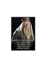 Harry Potter Harry Potter ( Magnet ) Dumbledore