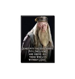 Harry Potter Harry Potter ( Aimant ) Dumbledore