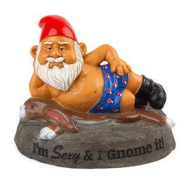 Bigmouth Garden Gnome ( I'm sexy and I Gnome it )