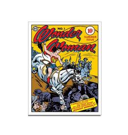 Dc comics Dc Comics ( Metal Sign 12.5 X 16 ) Wonder Woman BD