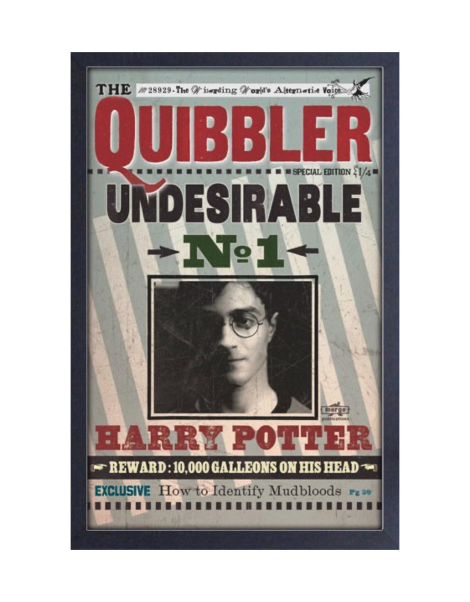 Harry Potter Harry Potter ( Framed print ) Quibbler Undesirable