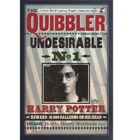 Harry Potter Harry Potter ( Framed print) Quibbler Undesirable
