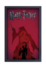 Harry Potter Harry Potter ( Framed print) Shadow