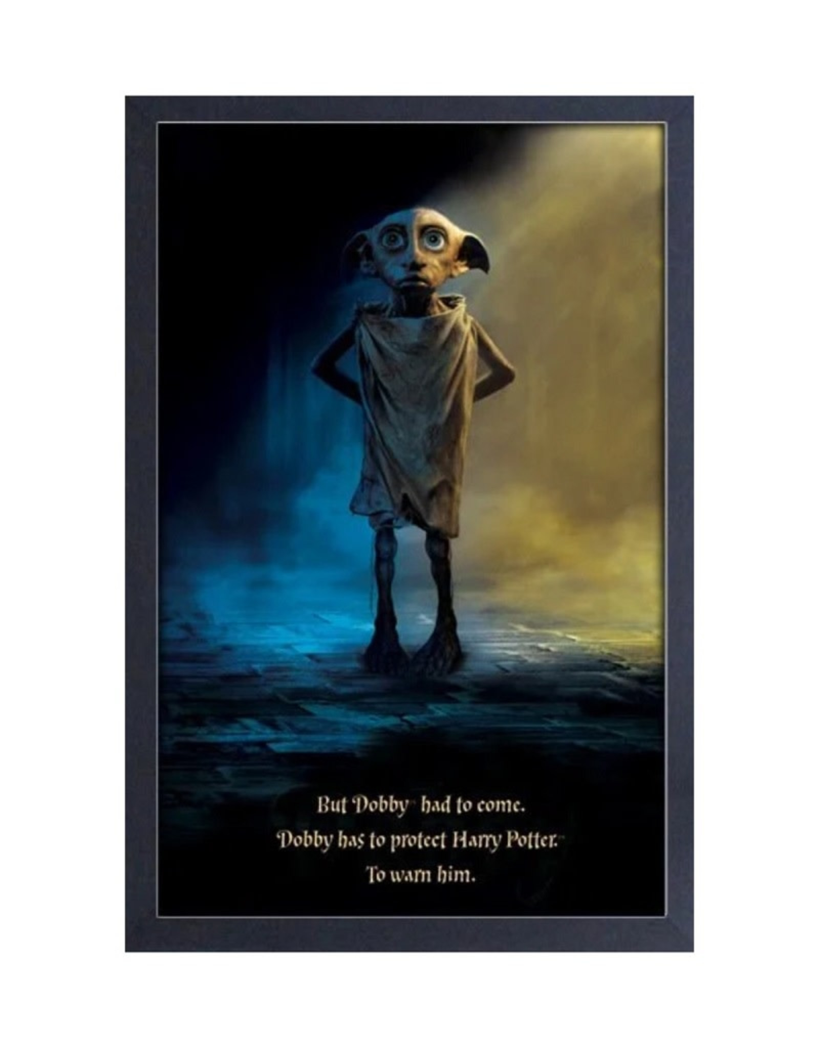 Harry Potter Harry Potter ( Framed print ) Dobby