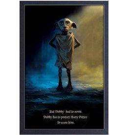 Harry Potter Harry Potter ( Cadre ) Dobby