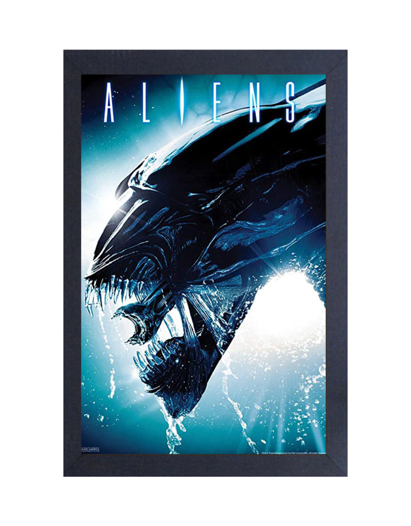 Aliens ( Framed print ) Head