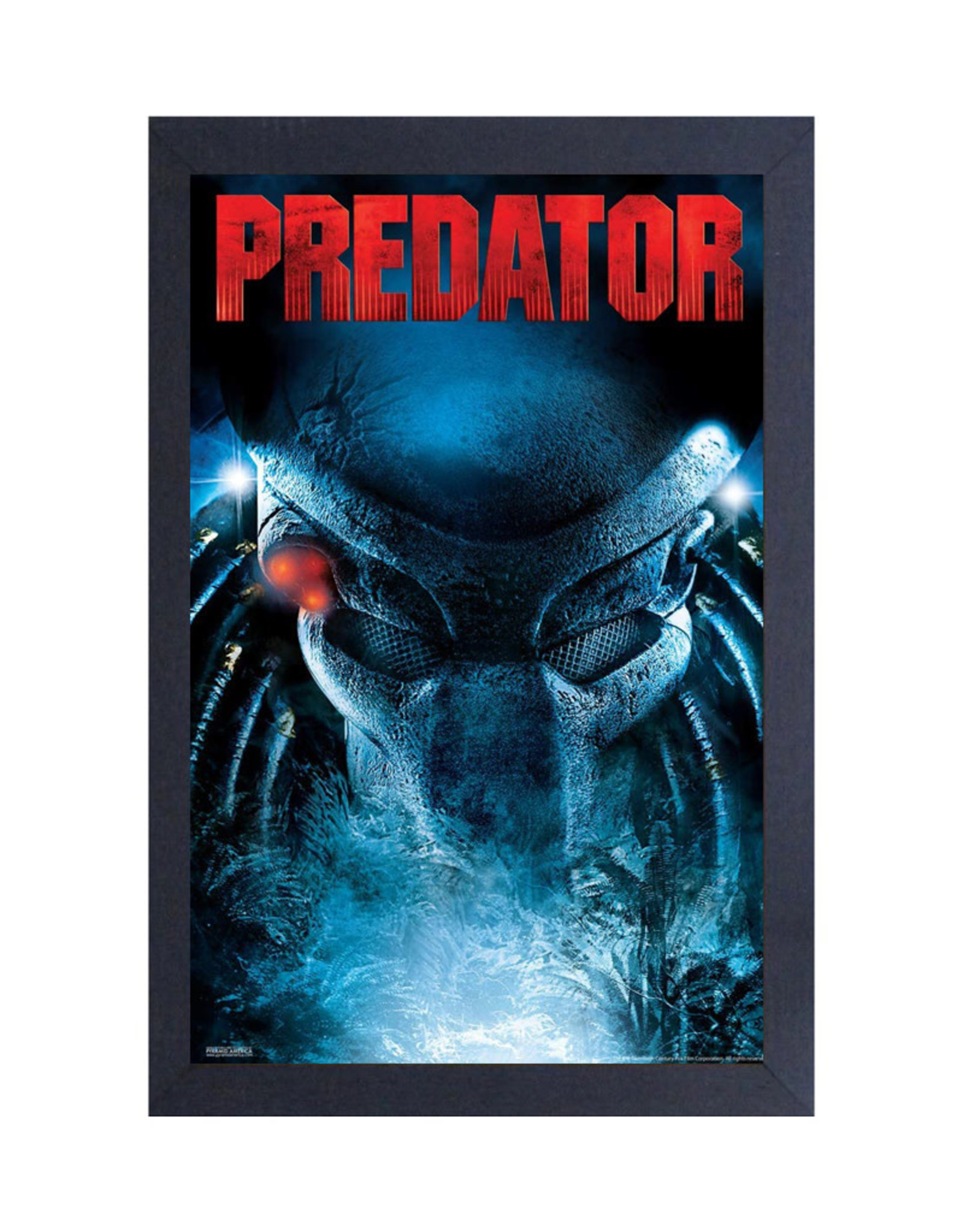 Predator ( Framed print ) Head