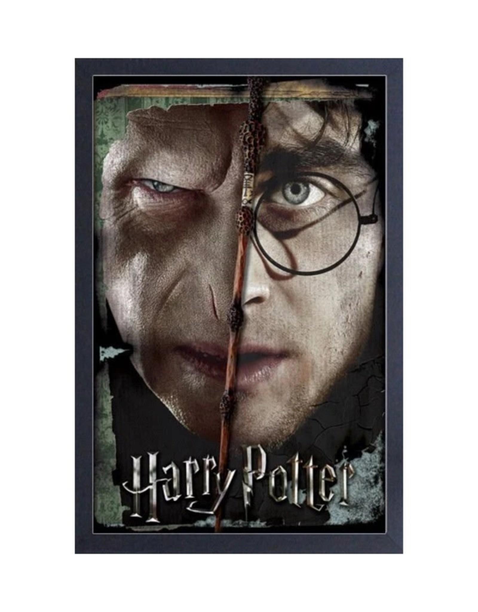 Harry Potter Harry Potter ( Framed print ) Split Face