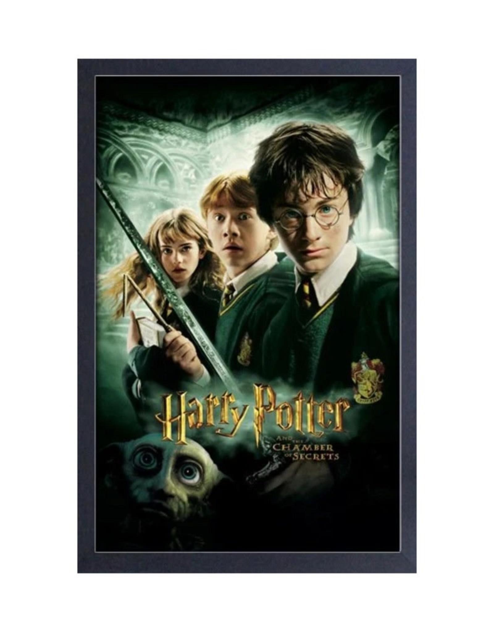 Harry Potter Harry Potter ( Framed print ) Chamber of secrets
