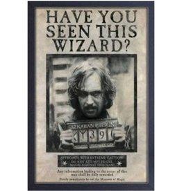 Harry Potter Harry Potter ( Framed print)  Sirius Black