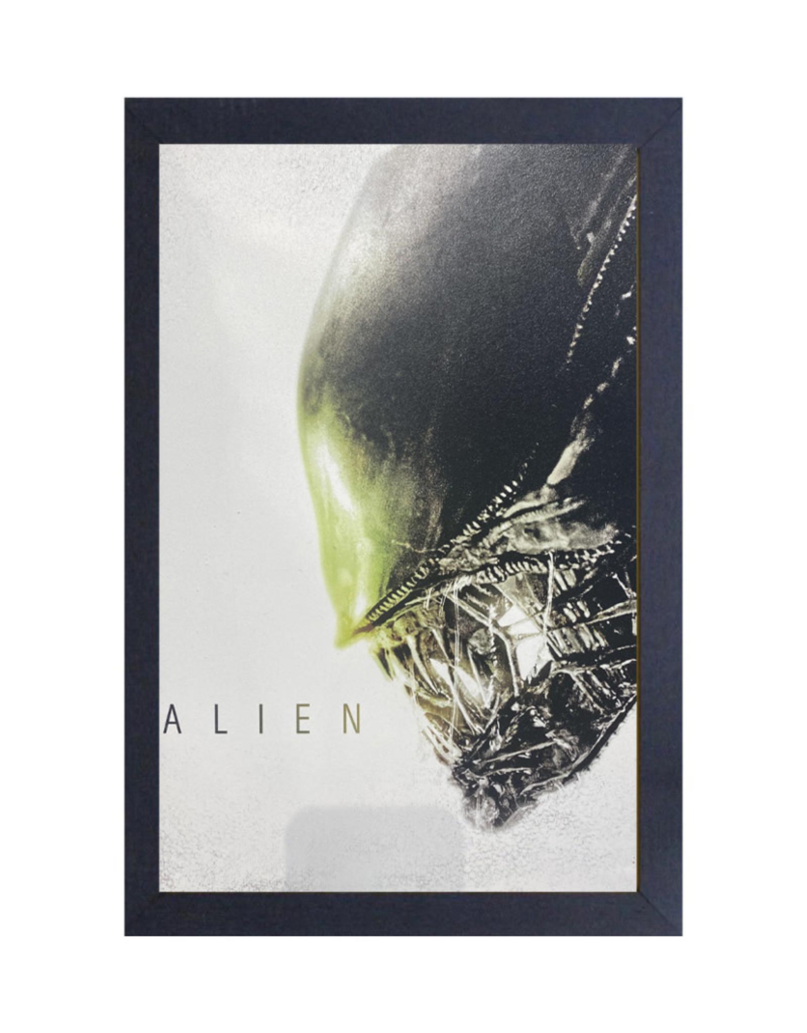 Alien ( Cadre ) Face