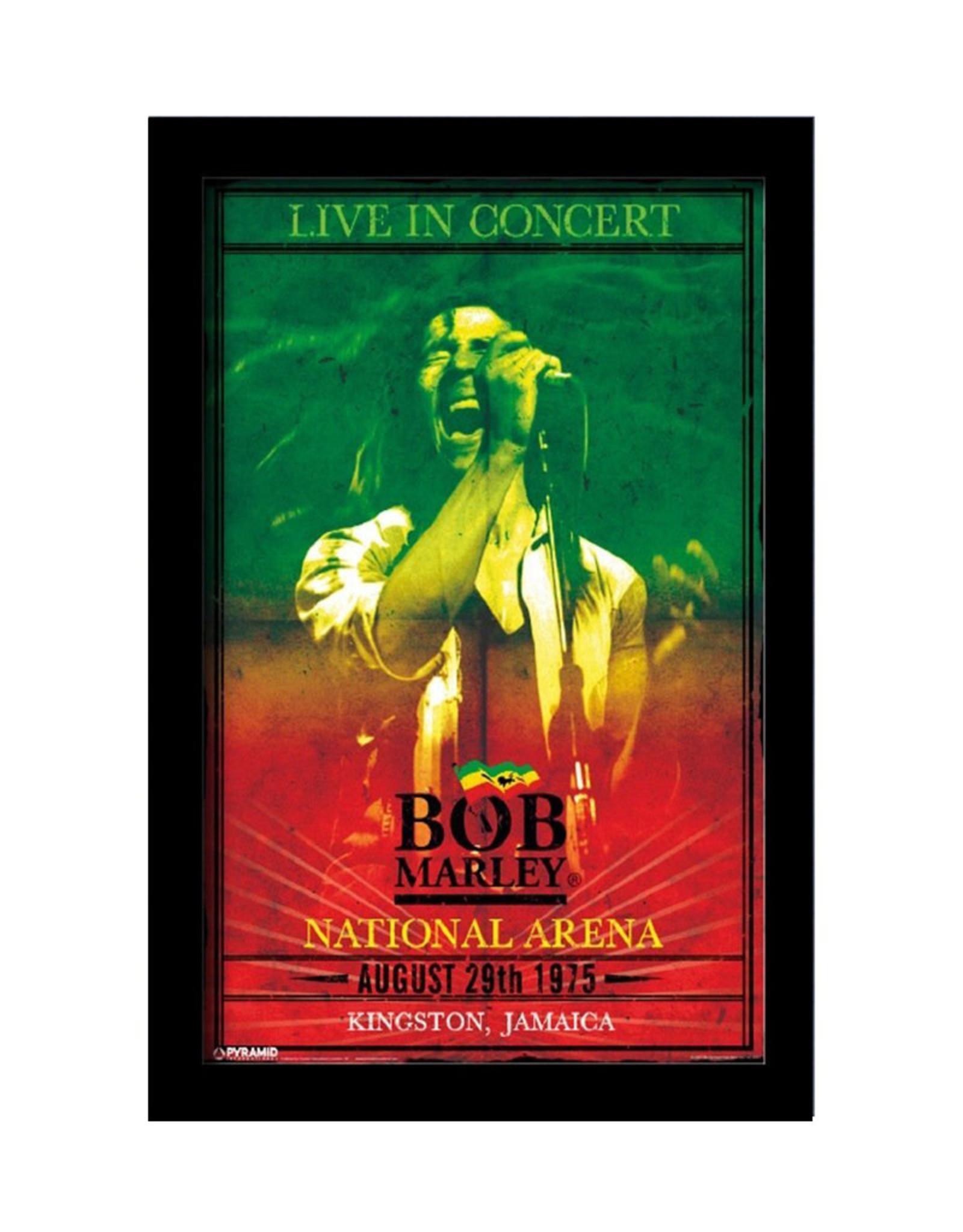 Bob Marley ( Framed print ) Concert
