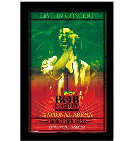 Bob Marley ( Cadre ) Concert