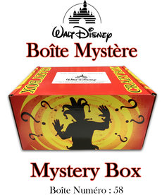 Mystery Box ( Disney 58 ) Crazy Box
