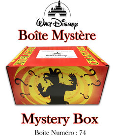 Mystery Box ( Disney 74 ) Crazy Box