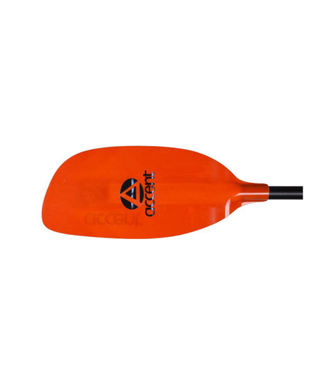 Accent premier Rogue Paddle